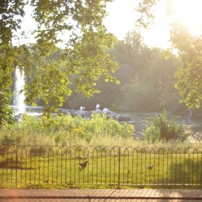 Photo of the Week: Summer Evening at St James's Park - London